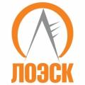 АО «Ленинградская областная электросетевая компания»